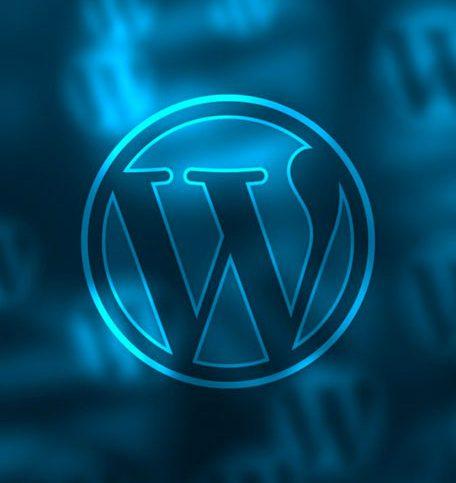 Diseño Web WordPress | Twin Leads